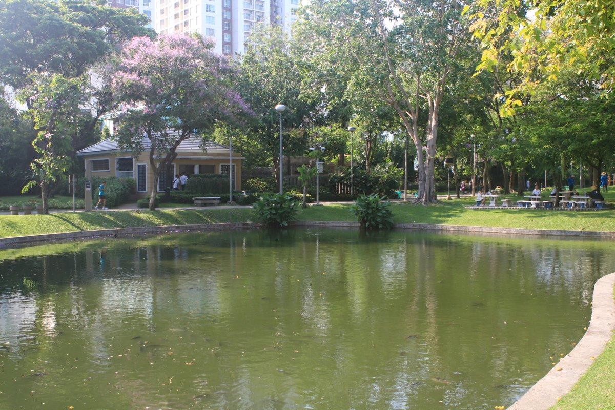Le parc en face de l'hotel